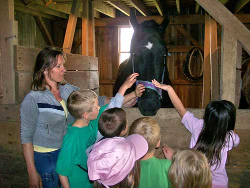 Barn tour - petting the horse